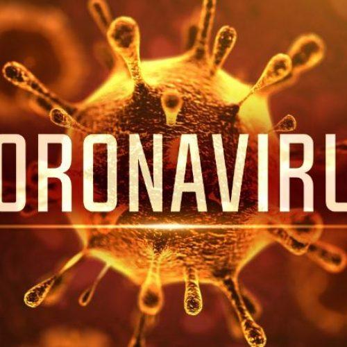 Pesquisa aponta que em dois meses 50% da população de Teresina pode ter contato com vírus
