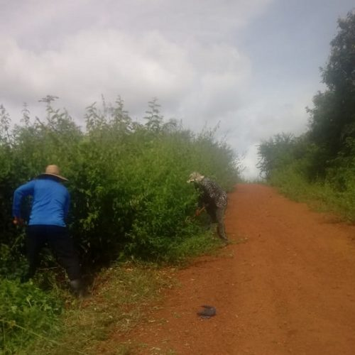 Prefeitura de Santana inicia roçagem e recuperação de estradas vicinais