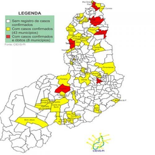 Veja a lista de cidades do Piauí que já apresentaram casos de coronavírus