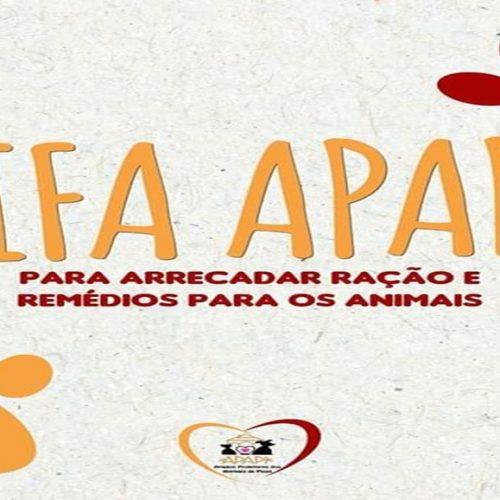 APAPI vai realizar rifa online para custear despesas com ração e tratamento de animais em Picos