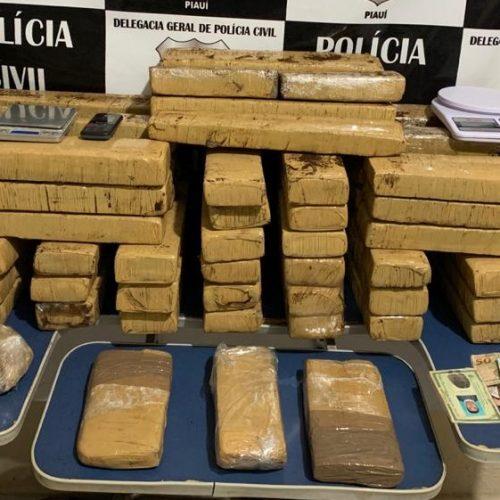 Polícia Civil apreende quase 70Kg de drogas e grande quantia em dinheiro na zona rural de Picos