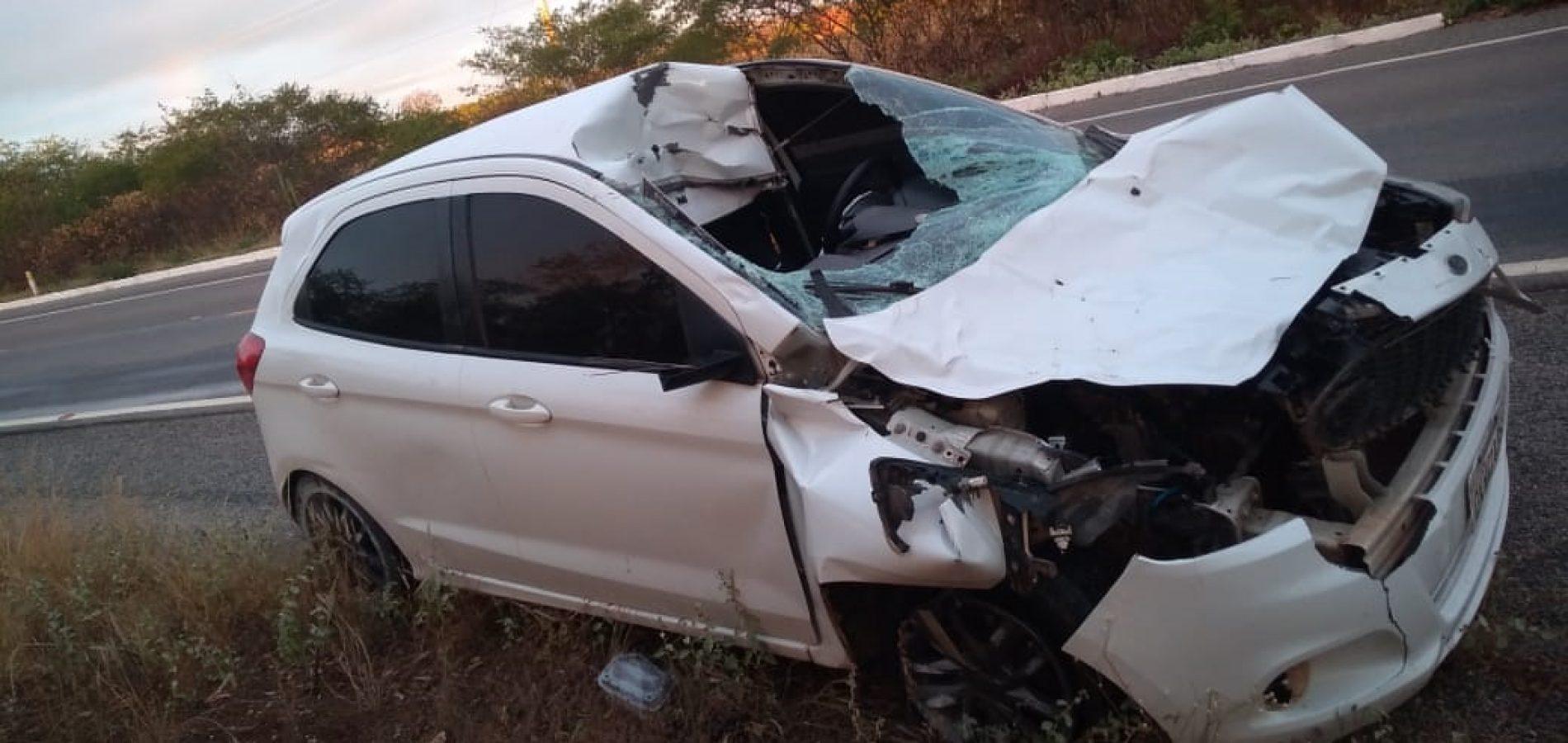 Motorista colide com animal na BR 407, em Jacobina