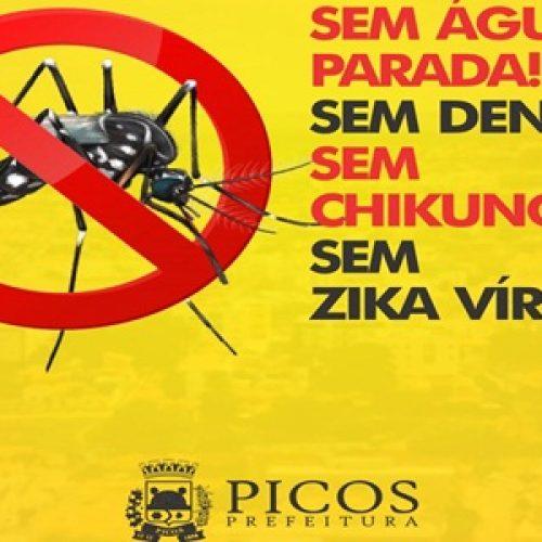 Saúde aponta crescimento de 108,4% de casos de Chikungunya em Picos