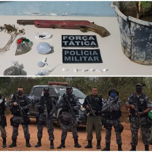 """Operação """"Rota dos Ventos"""" localiza plantio de drogas, apreende arma e prende homem suspeito de tráfico na Serra do Inácio"""