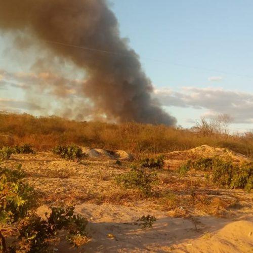 Morador causa grande incêndio em mata ao limpar terreno em Pio IX