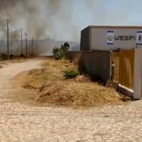 Incêndios atingem áreas de vegetação em Picos e mais três cidades do Piauí