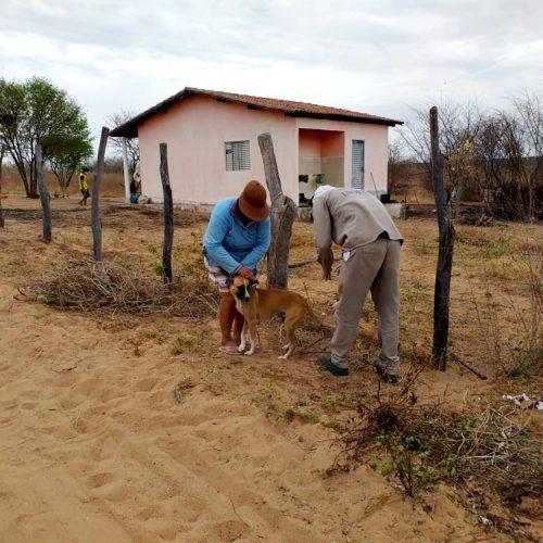 Mais de 1.200 animais são vacinados contra raiva em Alagoinha do Piauí