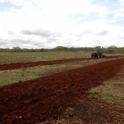 Prefeitura de Picos inicia aração de terras na zona rural