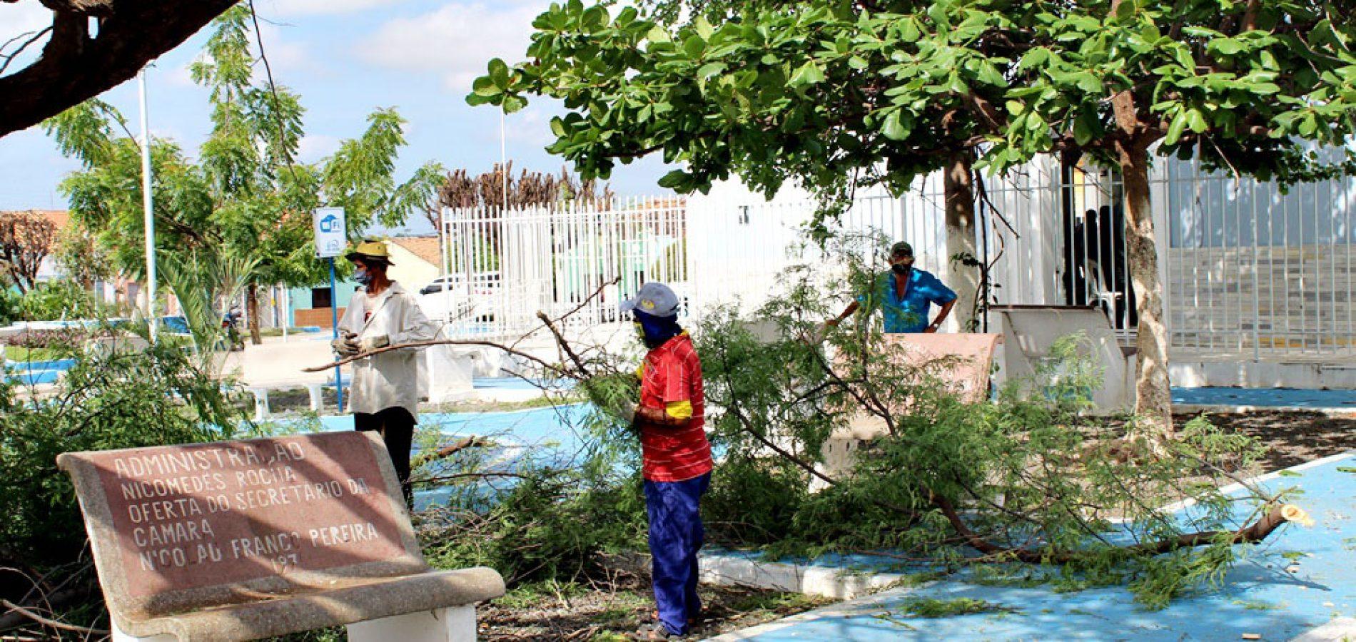 Prefeitura de São Julião realiza poda de árvores e manutenção da iluminação pública