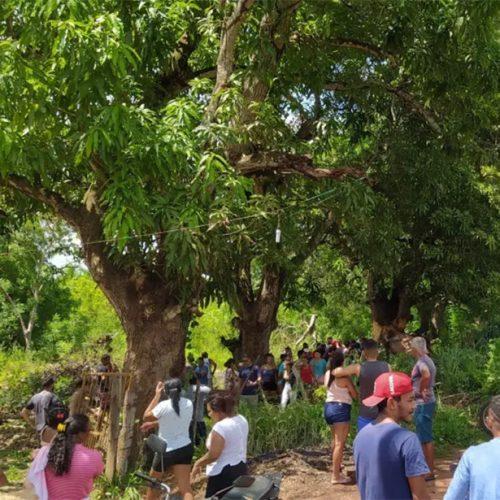 Veículo tomba, bate em árvore e mata dois homens no interior do Piauí