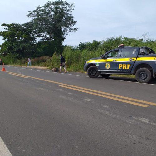 Motociclista morre ao colidir com caminhão na BR-230 em Oeiras