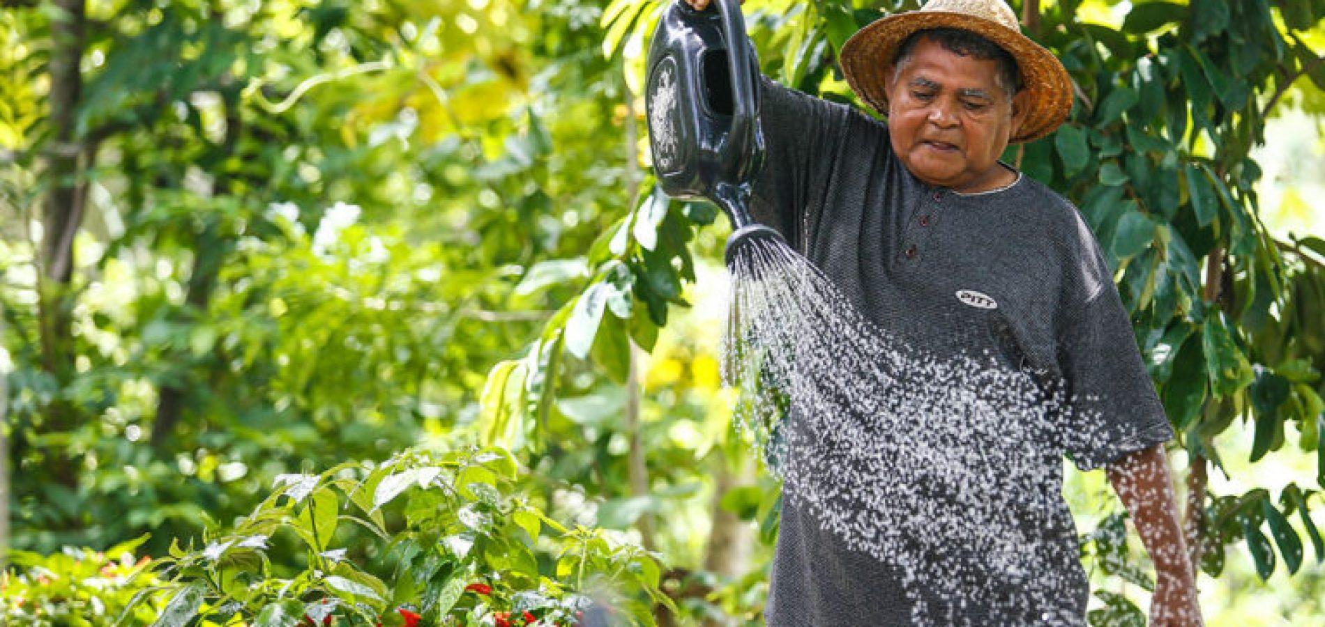 Projeto leva água para comunidades rurais no Nordeste