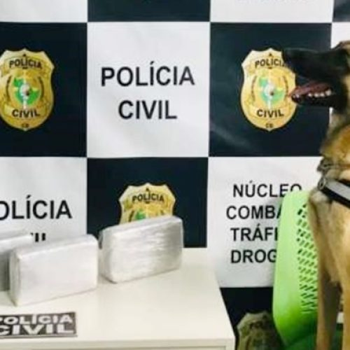 Homem de Itainópolis é preso no Ceará com 4 quilos de cocaína