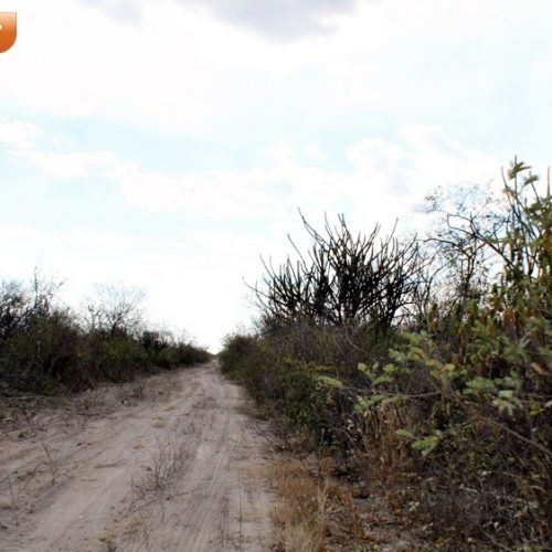 Mulher encontra esposo morto dentro de residência na zona rural de Monsenhor Hipólito