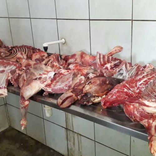 Fiscalização encontra 60 kg de carne imprópria para consumo sendo comercializada em cidade do Piauí