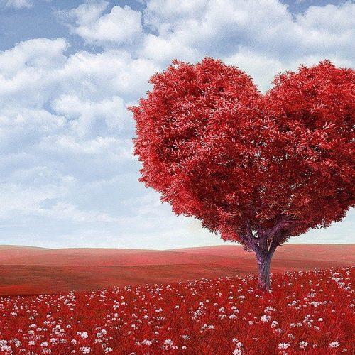 Campanha do Dia dos Namorados com casal de homens gera grande repercussão; veja vídeos