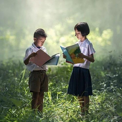No Dia do Meio Ambiente, livros ajudam a conscientizar pais e crianças