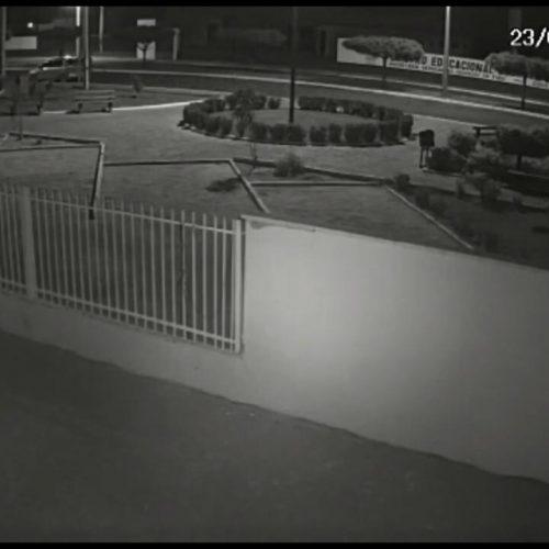 Câmera de segurança flagra execução de jovem em praça no Centro de Belém do Piauí