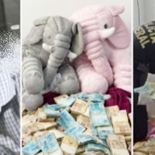 Servidor do INSS é preso com R$ 600 mil dentro de ursos de pelúcia
